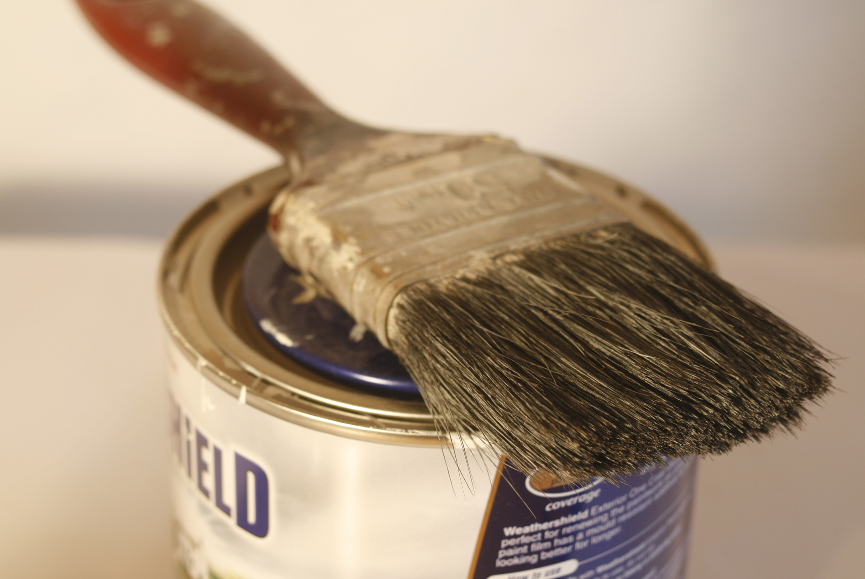 Photograph of a paintbrush on top of a paint can.